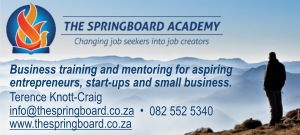 THE SPRINGBOARD ACADEMY