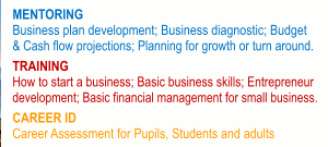 MENTORING